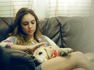 'Pets Filmes' se tornou sucesso nas redes sociais e vem crescendo durante todo o ano  (Foto: Reprodução/Pets Filmes)