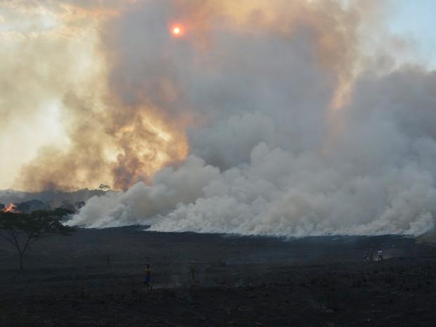 Fogo se alastrou rapidamente por causa do calor (Foto: Jonatas Boni/ G1)