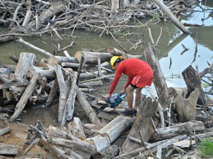 Operação iniciou nesta quinta-feira no Rio Juruá em Cruzeiro do Sul  (Foto: Anny Barbosa/G1)
