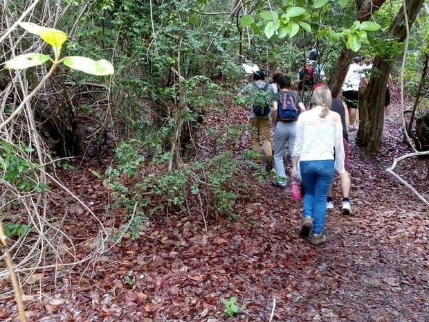 Grupo de franceses reabriu a atividade no Parque das Dunas, nesta terça-feira. (Foto: Divulgação / Idema)