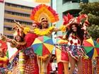 Secult de AL divulga selecionados do Prêmio de Carnaval Bicentenário 2017