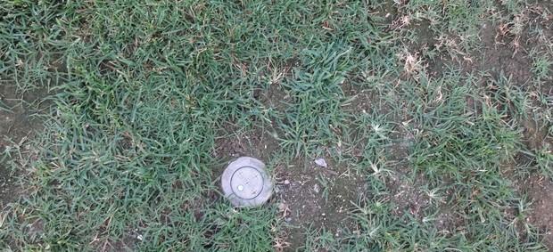 Cano do sistema de irrigação fica perceptível no gramado da UCV (Foto: Hector Werlang/Globoesporte.com)