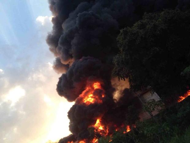 Bombeiros e Defesa Civil foram chamados para combater as chamas (Foto: Sandra Schadt/Tem Você )
