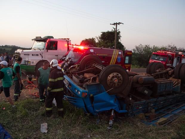 Caminhão com bois capotou e passageiro morreu em estrada vicinal de Araraquara (Foto: Marcos Leandro/Tribuna Araraquara)