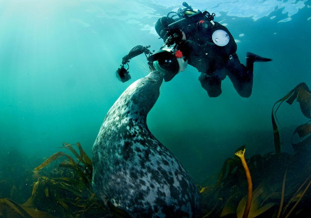 Imagem foi feita perto de ilhas inglesas (Foto: Adam Hanlon/Caters)