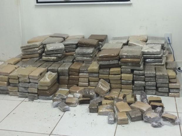 Cerca de 400 quilos de maconha foram apreendidos na Vila Itamar  (Foto: Divulgação / Senarc)