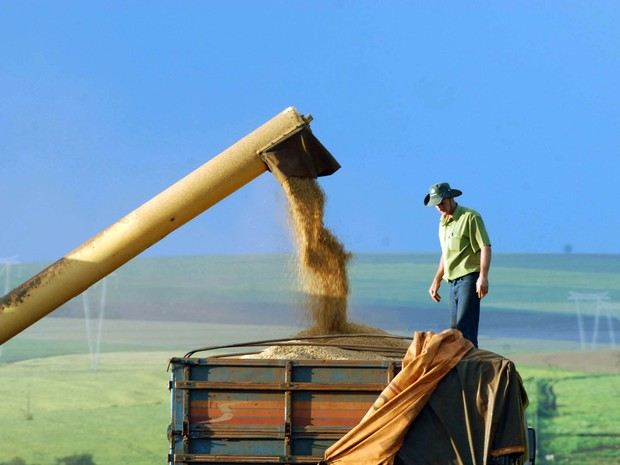 Colheita foi foi de 38 milhões de toneladas de grãos no estado, segundo a Secretaria da Agricultura e do Abastecimento  (Foto: Jonas Oliveira / ANPr)
