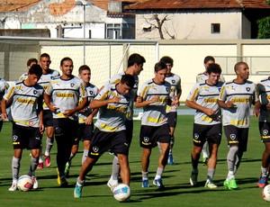treino Botafogo campo anexo (Foto: Fred Huber)
