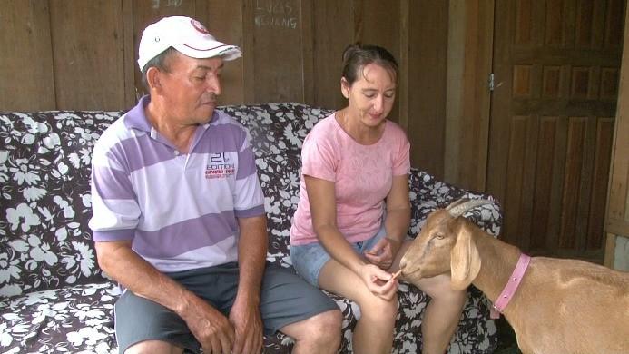 Família Machado cria a cabra 'Bita' dentro de casa, em Ji-Paraná (Foto: Bom Dia Amazônia)