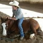 'Encantador de cavalos' conta seus segredos (Giovani Grizotti/RBS TV)
