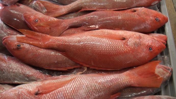 Daniel Cady ensina receita de peixe em crosta de sal grosso (Foto: TV Bahia)
