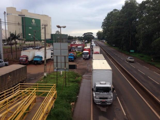 Caminhões estão parados em trecho da BR-369, em Arapongas (Foto: Eduardo Lhamas/RPC)