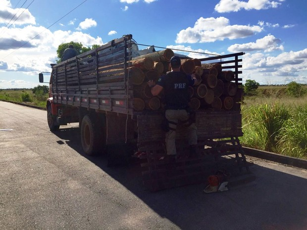 Madeira e motosserra foram apreendidos pela PRF no domingo (Foto: PRF/Divulgação)