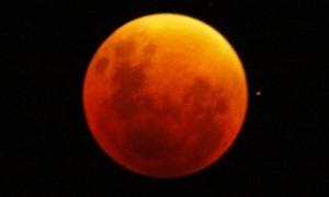 Confira algumas das fotos do eclipse tiradas pelos telespectadores do Fantástico