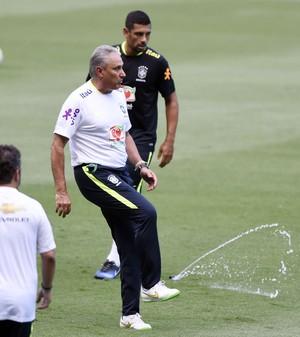 Tite e Diego Souza, treino seleção brasileira, Estádio Nilton Santos (Foto: André Durão)