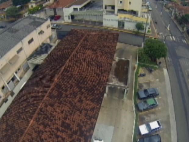 Drone identifica locais com água parada  (Foto: Reprodução / TV TEM)