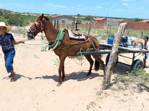 PREP_ Na zona rural de Petrolina, a repórter Danielle Zampollo acompanhou a jornada de sete horas de Jusci Cleide em busca de água (Foto: TV Globo)
