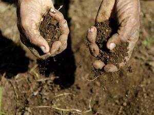 Teodoro Acuña, 42, agricultor em Nicarágua, teve sua plantação afetada pela seca (Foto: Inti Ocon/AFP)