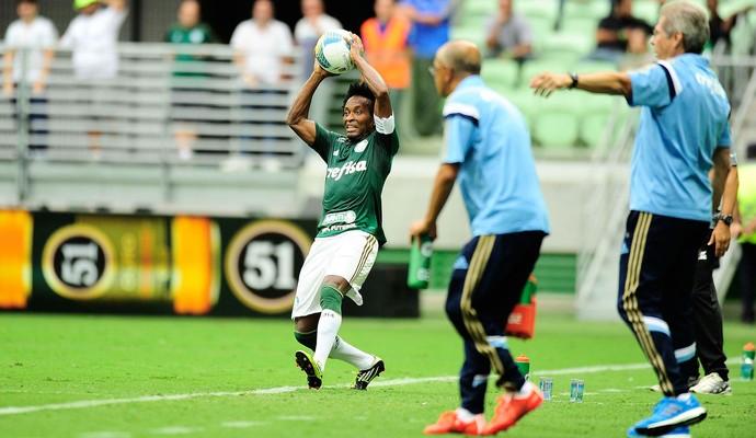 Zé Roberto Audax-SP X Palmeiras (Foto: Marcos Ribolli)
