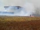 'Falta planejamento para evitar queimadas', diz promotor de Justiça