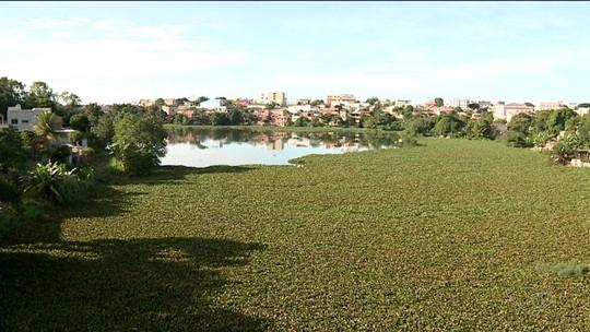 Poluição intensa compromete lagoas urbanas de Linhares, ES