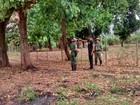 Em MG, polícia realiza operação de combate à irregularidades ambientais