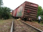 Trem carregado com soja descarrila em Ijuí, no Noroeste do RS