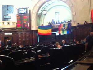 Plenário antes da votação do projeto de lei (Foto: Lívia Torres / G1)