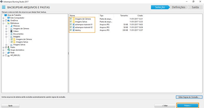 Escolha quais arquivos precisa salvar (Foto: Reprodução)