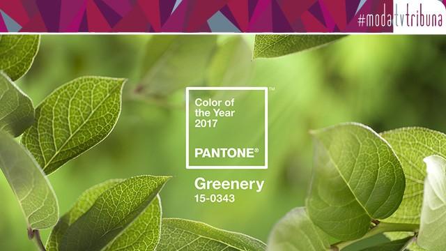 Pantone de 2017: Verde Greenery (Foto: Pantone Brasil)