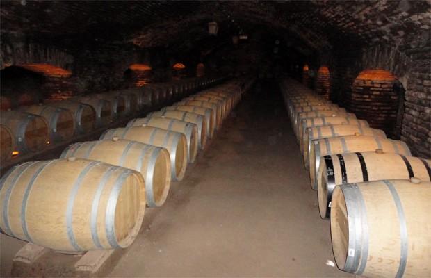 Barris de carvalho em vinícola do Valle Maipo, região metropolitana de Santiago (Foto: Caminhos da Roça)
