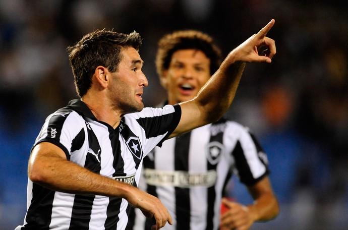 Navarro gol Botafogo (Foto: Dhavid Normando / Futura Press)