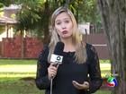 MP investiga prefeitura em MS por usar dinheiro público para carnaval