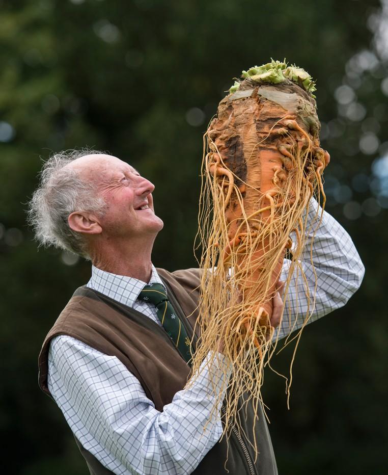 Peter Glazebrook exibe sua cenoura de 7,97 quilos (Foto: Oli Scarff/AFP)