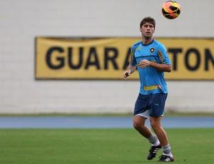 Fellype Gabriel botafogo treino (Foto: Satiro Sodré / Divulgação)