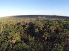 Brasil usará drones para vigiar mata na Amazônia e no Cerrado
