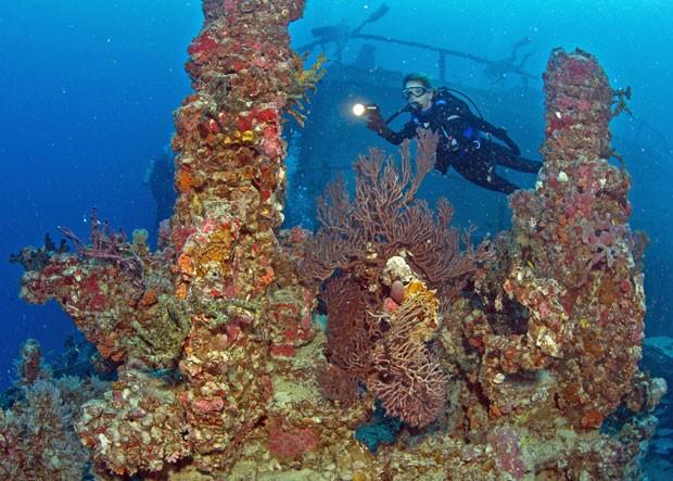 Mergulhadora explora a estrutura do Spiegel Grove nesta quarta (16) (Foto: Reuters/Stephen Frink/Florida Keys News Bureau)