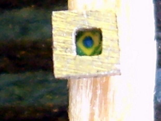 Morador de Mombuca quer entrar no Guiness Book com miniatura de quadro (Foto: Wesley D'Amico/VC no G1)