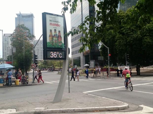 São Paulo registra máxima de 35,2ºC e tem dia mais quente desde 8 de janeiro (Foto: Paulo Guilherme/G1)