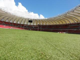 gramado Beira-Rio Inter (Foto: Carmem Lopes / RBS TV)