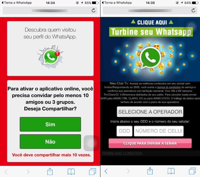 Para supostamente ter acesso ao recurso, internauta precisa assinar serviços premium (Foto: Divulgação/Kaspersky Lab)