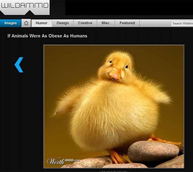 Sites reproduziram as imagens de montagens do 'worth1000' (Foto: Reprodução)