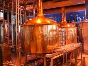 Cervejaria consegue produzir 100 mil litros por mês (Foto: Divulgação / Amazon Beer)