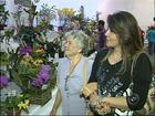 Festa da orquídea traz mais de duas mil flores em Várzea Paulista