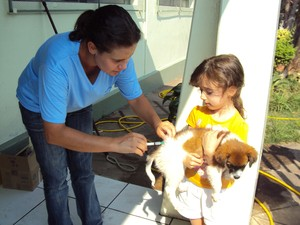 Meta é imunizar 27 mil animais contra a raiva (Foto: Semusa/Diretoria de Vigilância em Saúde)