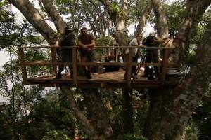 Florestas Bloco 1b (Foto: Rede Globo)