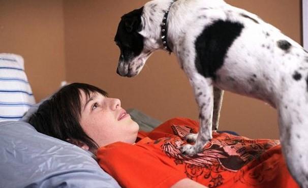 Garoto recebe um cachorro vampiro de herança (Foto: Divulgação / Reprodução)