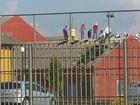 Presos com transferência negada para SC são levados para Piraquara