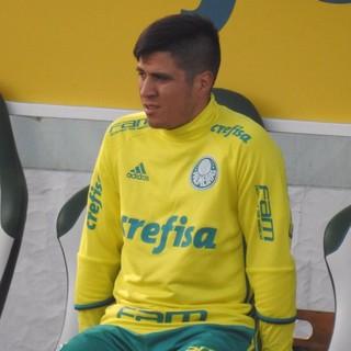 Cristaldo Treino Palmeiras (Foto: Rodrigo Faber)