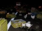 Caminhão tomba e galinhas ficam espalhadas em rodovia de Jaú